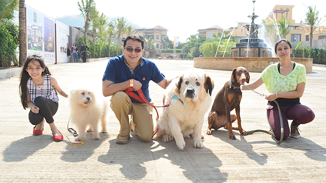 Go for a walk with our Dogs at Della Adventure Park