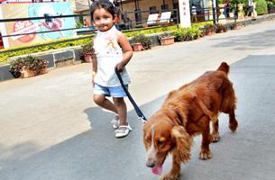Della Adventure Dog Walk