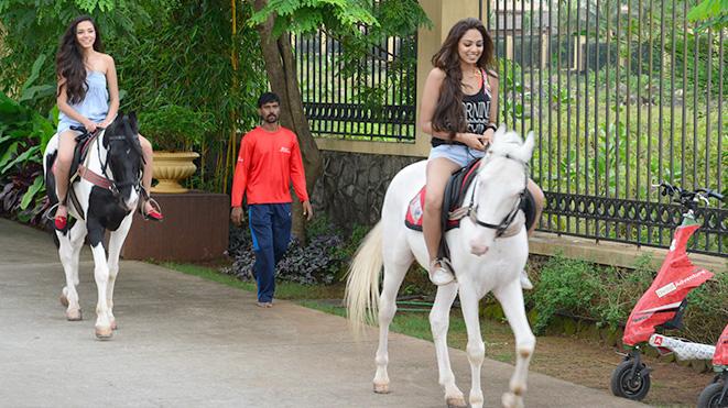 Enjoy Horse Trot at Della Adventure Park